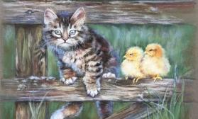 Котенок и цыплята
