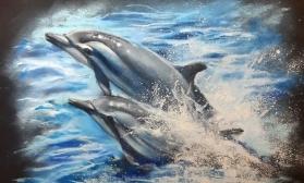 Грациозные дельфины