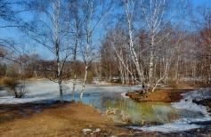 Рисуем солнечный пейзаж с ранней весной в технике сухая пастель