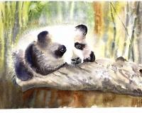 Панда в акварели