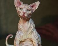 Лепим кошку породы Сфинкс