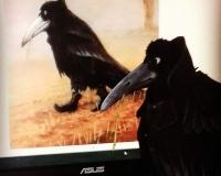 Чёрный ворон (по картине Руди Хузлмайера \