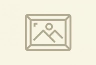 Запись выступления спикера Александра Кугеля. Живопись маслом с Александром Кугелем