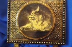 Сова - символ мудрости