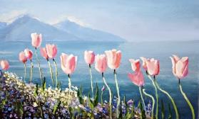 Воздушный пейзаж с тюльпанами