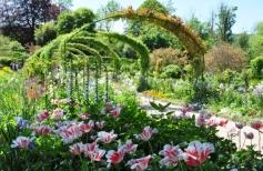 Сад в Живерни