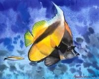 Тропическая рыбка акварелью