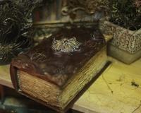 Таинственная книга \
